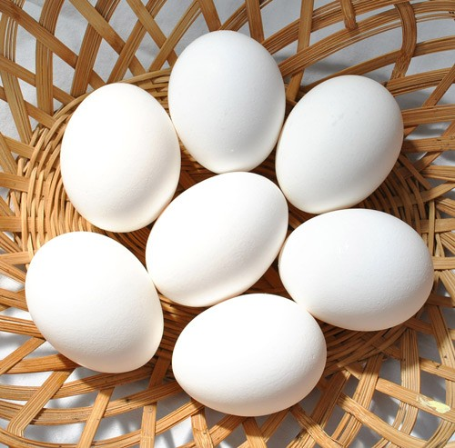 eggs-570540_1920-USE