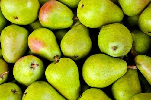 fruit-1534494_1920-uSE