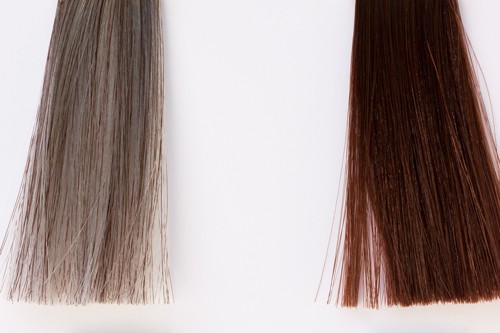 Compare hair color samples